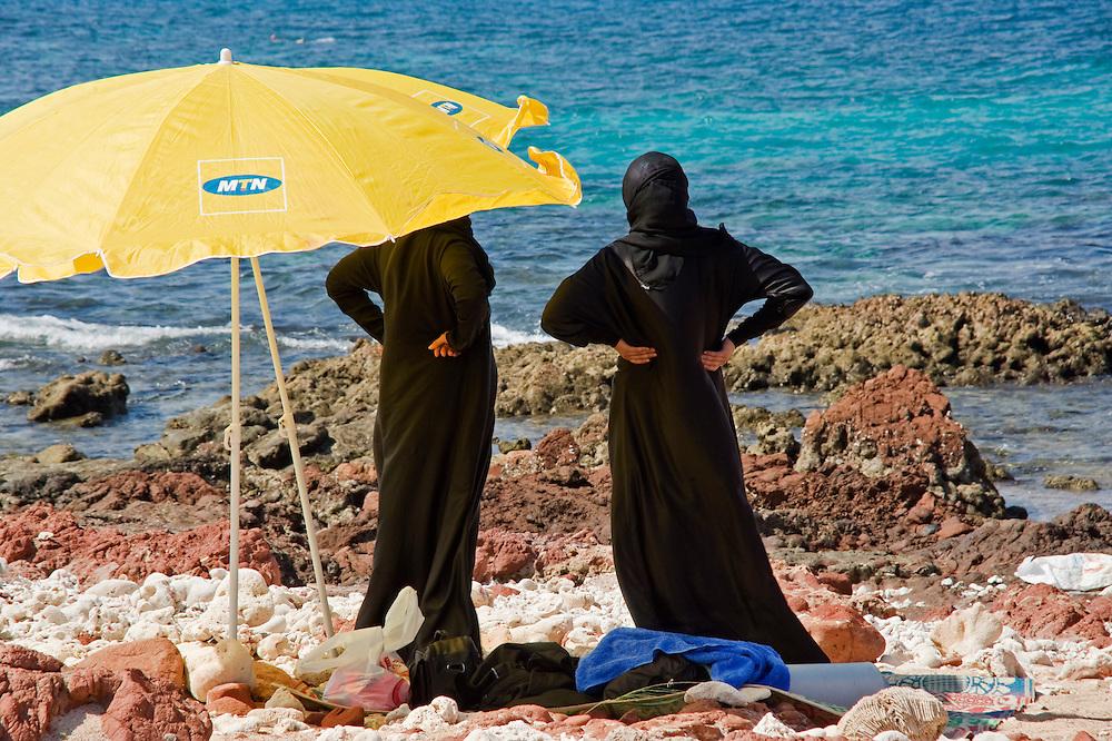 Un jour a la plage...A day at the beach.