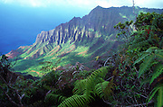 Kalalau Valley from Kokee, Kauai, Hawaii<br />