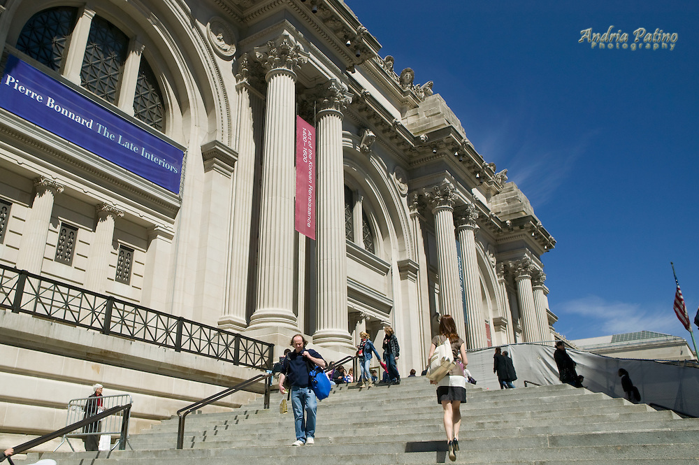 Steps leading up to the Metropolitan Museum of Art, New York