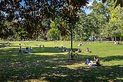 Moment de détente au jardin public de Bordeaux // Leisure time at public garden of Bordeaux