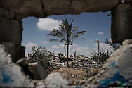 Gaza Strip, Khuza'a: Destruction in Khuza'a village is seen through a damage wall on August 3, 2014. ALESSIO ROMENZI