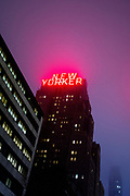 The neon sign on the New Yorker Hotel shine through the fog.