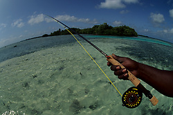 Stock photo of a man casting his rod into a clear tropical sea