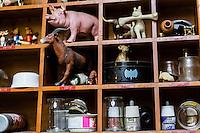 Brussels, Belgium 29 August 2014. Inspirational items of Johan De Moor, famous Belgian cartoonist  in his studio. bottles, ink, a porc, a dog with a bone, bat, cow, deerand more. © Sander de Wilde pour M le magazine du Monde
