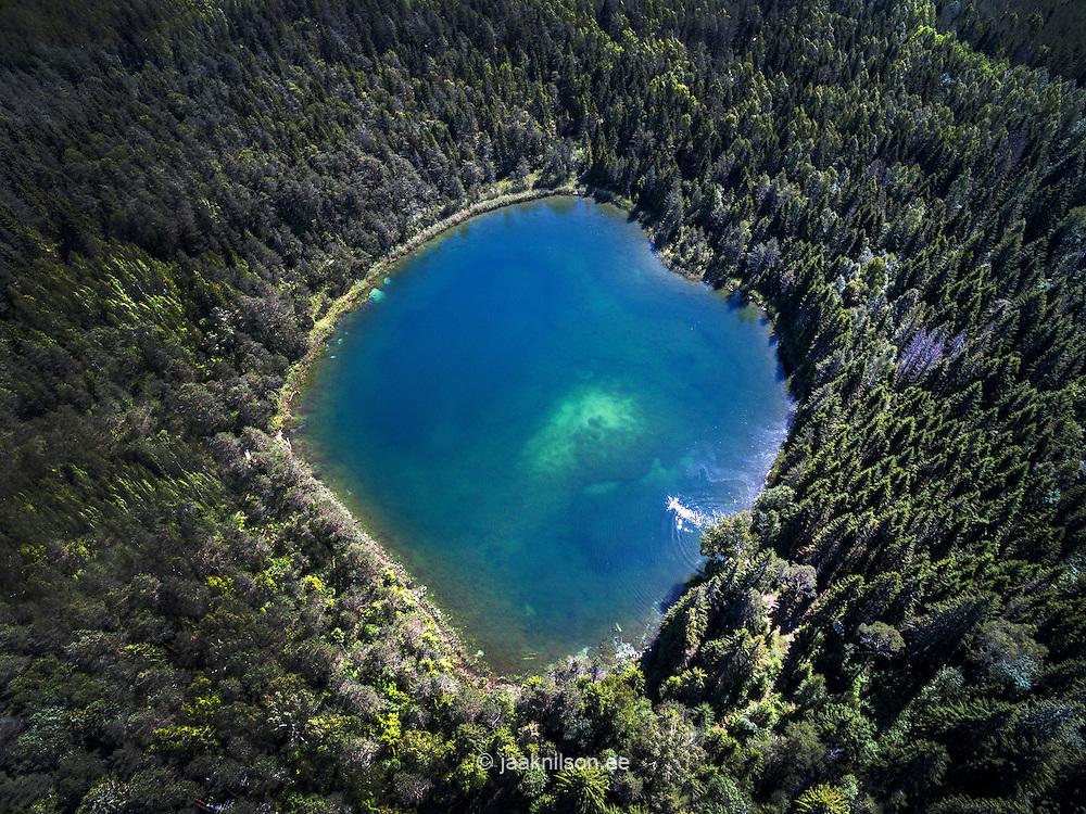 Äntu Valgejärv (White lake) in Estonia. Aerial, green forest. Conifer.