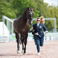 Para-Dressage - Horse Inspection