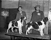 1952 - Dog Show at Portabello Barracks, Dublin
