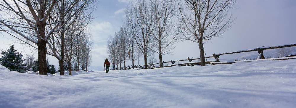 Person walking on snow covered land