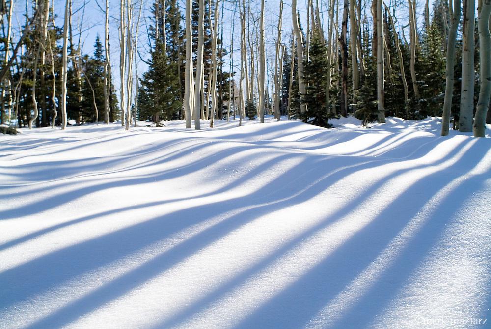 Red Cloud area of upper Deer Valley