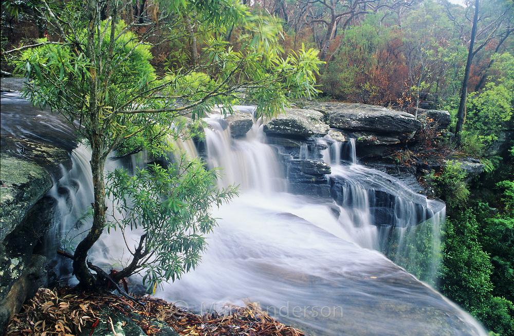 Waterfall, Upper National Falls, Royal National Park, Australia.