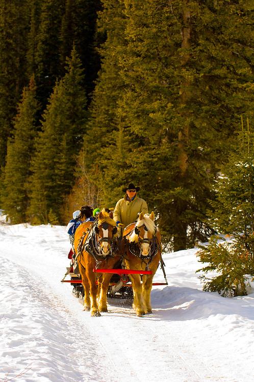 Sleigh ride along the edge of Lake Louise, Banff National Park, Alberta, Canada