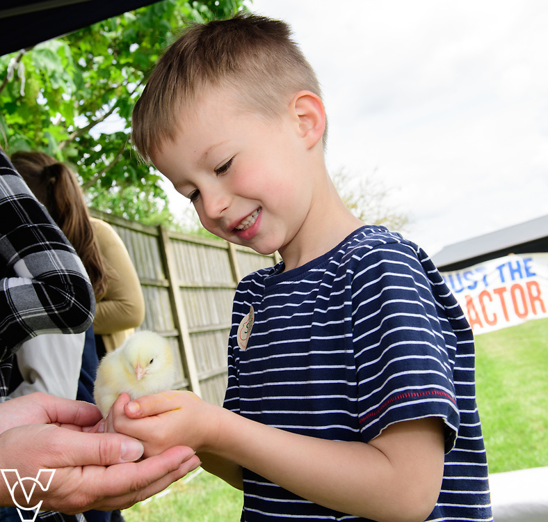 As part of Open Farm Sunday, May Park's Barr Farm in Billinghay, Lincolnshire, was open to the public.  Pictured is Oliver Ramskill (five).<br /> <br /> PIcture: Chris Vaughan Photography<br /> Date: May 21, 2017