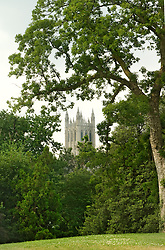 5503_Burling_Cathedral_View