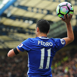 Pedro of Chelsea ready for a throw during Chelsea vs Crystal Palace, Premier League , 01.04.17 (c) Harriet Lander | SportPix.org.uk