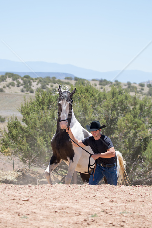 cowboy walking a horse up a hill on a ranch