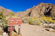 Trail sign, Borrego Palm Canyon, Anza-Borrego Desert State Park, California USA