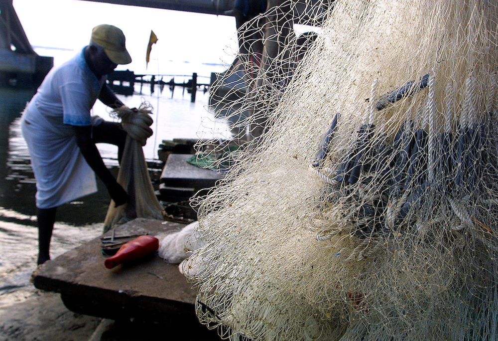 Benin November 27, 2001 - Beninese fisherman in northem of Cotonou threads an hold fishing net