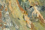 Rock detail<br /> Marathon<br /> Ontario<br /> Canada