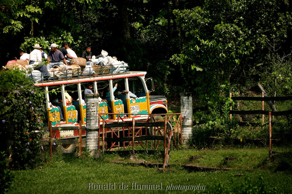 Chiva, the traditional transport in the Colombian mountains..Toribio is a small town, capital of the mountainous region with the same name, in central Cauca Province. The area is an indigenous reserve for the Nasa indians and is governed by traditional tribal law. The indians are stuck in the middle between the permanent presence of several FARC camps and contingents of the governement army.  2003 Cauca province, southern Colombia