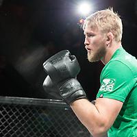 Alexander Gustafsson