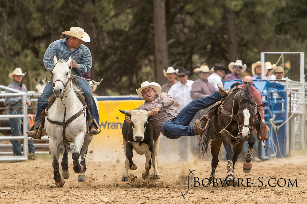 Bill Claunch makes his steer wrestling run during the third performance of the Elizabeth Stampede on Sunday, June 3, 2018.