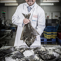 28/01/2014 Grimsby - Steve Stansfield of Flatfish Ltd of Grimsby with a faremd Halibut