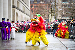 © Licensed to London News Pictures . 26/01/2020. Manchester, UK. A lion dances in St Peter's Square . People celebrate Chinese New Year in Manchester with a display of oriental culture and a procession through the city centre . Photo credit: Joel Goodman/LNP