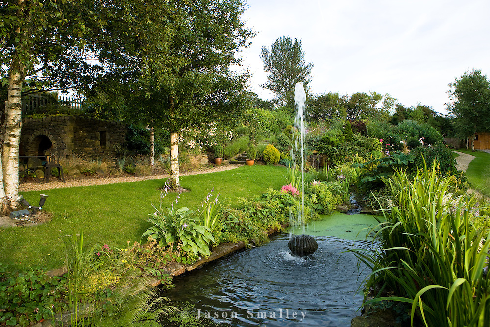 silver birch trees and small pool in garden, with a fountain