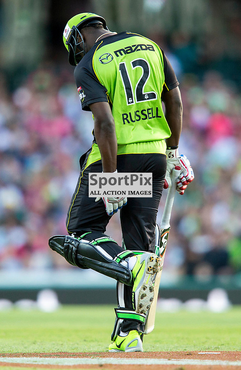 KFC Big Bash League T20 2015-16 , Sydney Sixers v Sydney Thunder, SCG; 16 January 2016<br /> Sydney Thunder Andre Russell touches his hamstring after nearly being run out