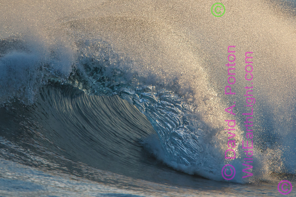 The inside surface of a large breaking wave forms a tube with a sculpted liquid inner surface lit by sunlight penetrating the top of the tube. Kauai, © 2010 David A. Ponton