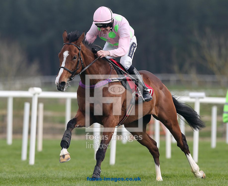 Ruby Walsh on Faugheen wins the Champion Novice Hurdle at Punchestown Festival at Punchestown Racecourse, Co.Kildare<br /> Picture by Lorraine O'Sullivan/Focus Images Ltd +353 872341584<br /> 29/04/2014