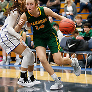 2019 Bishop Manogue High Girls Basketball