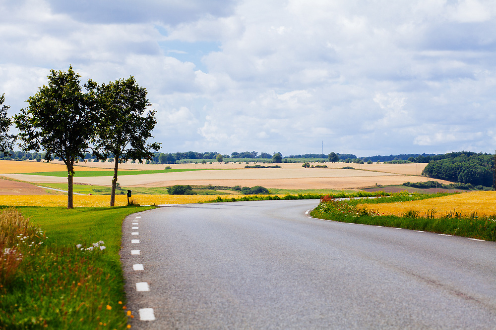Road and the Skåne landscape in the background.