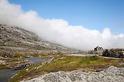 Norwegian landscape, Nibbevegen<br /> <br /> Paisaje desde la carretera