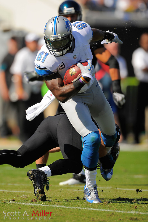 Detroit Lions wide receiver Calvin Johnson (81) during the Lions 31-14 win over the Jacksonville Jaguars at EverBank Field on November 4, 2012 in Jacksonville, Florida. ..©2012 Scott A. Miller..