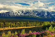 St. Elias Mountains, a subgroup of the Pacific Coast Ranges<br /> from Haines Junction<br /> Yukon<br /> Canada