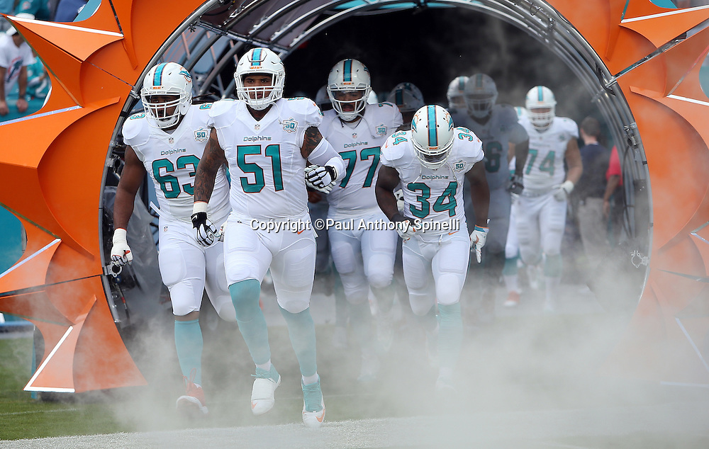 The Miami Dolphins run out of the tunnel and onto the field during pregame player introductions before the 2015 week 13 regular season NFL football game against the Baltimore Ravens on Sunday, Dec. 6, 2015 in Miami Gardens, Fla. The Dolphins won the game 15-13. (©Paul Anthony Spinelli)