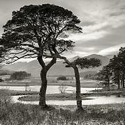 Loch Tulla, Highlands