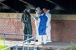 © Licensed to London News Pictures . 16/11/2015 . Liverpool , UK . The scene by the Leeds-Liverpool Canal in the Eldonian Village area of Liverpool where a 16 year old boy was shot dead last night (15th November 2015 ) . Photo credit: Joel Goodman/LNP