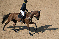Kirchhoff Ulrich, UKR, Prince de la Mare<br /> Olympic Games Rio 2016<br /> © Hippo Foto - Dirk Caremans<br /> 17/08/16