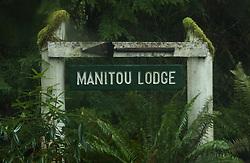 That way through the Coastal Temperate Rainforest to the Manitou Lodge, Quillayute Valley, Olympic Peninsula, Washington, US