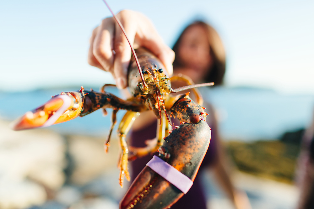 Young woman holding lobster outdoors