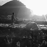 The end of a farming day in Ha Giang, Vietnam's northernmost province.