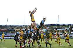 Dewald Potgieter (c) of Worcester Warriors catches the ball from a line out - Mandatory by-line: Dougie Allward/JMP - 04/02/2017 - RUGBY - BT Sport Cardiff Arms Park - Cardiff, Wales - Cardiff Blues v Worcester Warriors - Anglo Welsh Cup