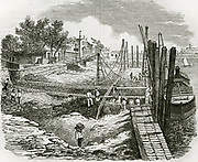 'Work in progress on the Thames Embankment, at Chelsea, London. The reclamation and drainage of land  led to the retreat of Malaria which had been endemic . Woodcut, 1857.'