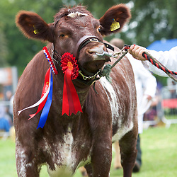 Aldborough and Boroughbridge Show 2017
