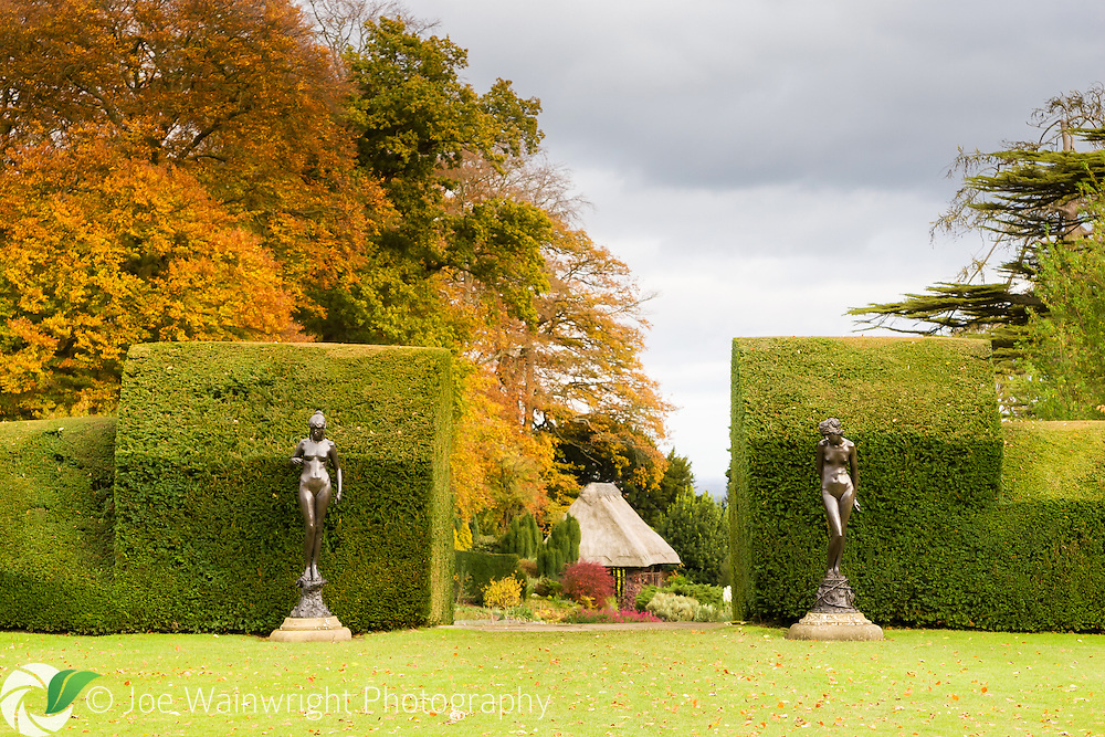 Two of the four bronze nymphs by Andrea Carlo Lucchesi (1860 – 1924) that grace the gardens at Chirk Castle, near Wrexham, North Wales.  Photographed in November.