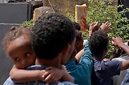 Roma 13 Giugno 2015<br /> I migranti nel centro di accoglienza  per migranti 'Baobab' vicino alla stazione ferroviaria Tiburtina di Roma. Centinaia di  migranti provenienti da Etiopia, Somalia ed Eritrea, tutti  arrivati negli ultimi mesi dalla Libia con i barconi e portati in Italia dopo essere stati salvati in mare. Distribuzione degli aiuti alimentari ai migranti che si contendono un pacchetto di biscotti.<br /> Rome June 13, 2015<br /> Migrants in the reception center for migrants 'Baobab' close to the Tiburtina train station in Rome. Hundreds of migrants mainly from Ethiopia, Somalia and Eritrea, all arrived in recent months from Libya with the barges and taken to Italy after being rescued at sea. Distribution of food aid to migrants who contend a packet of biscuits.