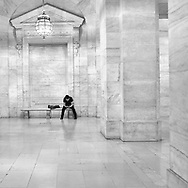 After hours  in The Stephen A. Schwarzman Building of the New York Public Library.