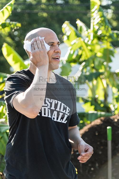 Democratic presidential hopeful Senator Cory Booker wipes his face after working up a sweat volunteering at Fresh Future Farm April 27, 2019 in North Charleston, South Carolina. Booker spent his 50th birthday helping out at the urban farm as part of his Justice For All tour.